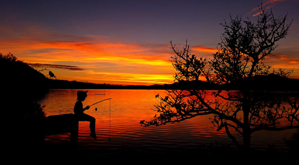 &quot;Give a man a fish, and you feed him for a day. Teach a man to fish, and you feed him for a lifetime.&quot; #education #teaching #MedEd #parents #parenting #wisdom #coaching #leadership<br>http://pic.twitter.com/ugoCzhBhwN
