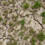 Did you know that 75% of UK ground #subsidence cases are caused by soil shrinkage or washing, with hotspot areas most at risk