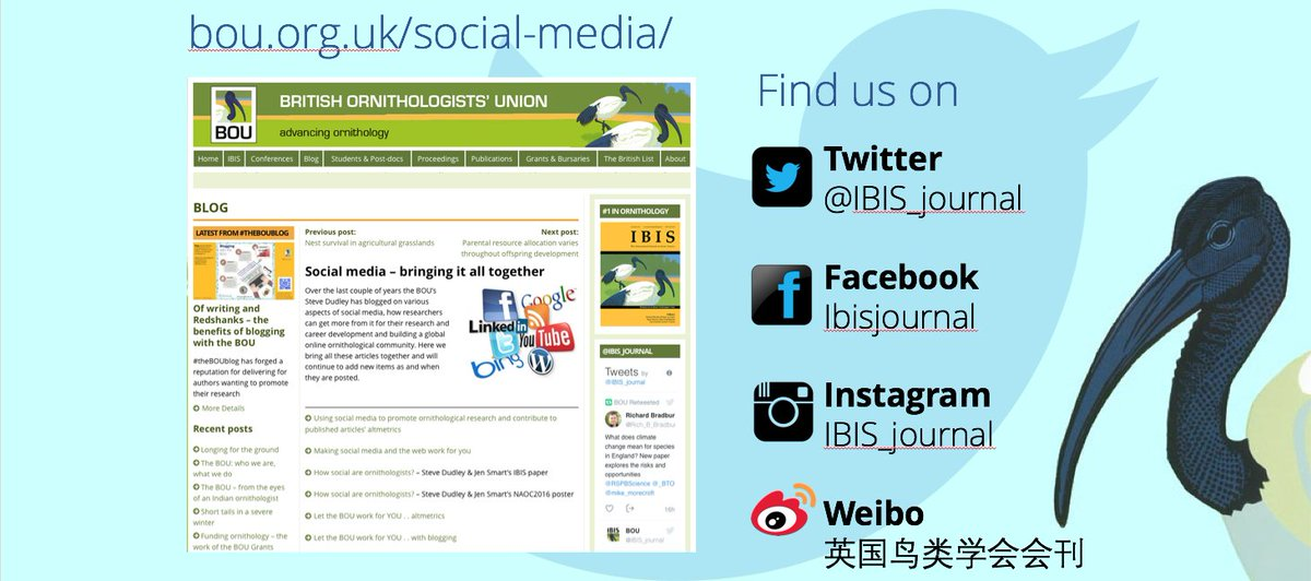 Social media, in particular Twitter, has been revolutionary in developing  online  communities e.g. in #ornithology, and BOU/@IBIS_journal has fast become a digital society leading on and encouraging #scicomm within our community #Sciparty <br>http://pic.twitter.com/zjr8jsGaiS