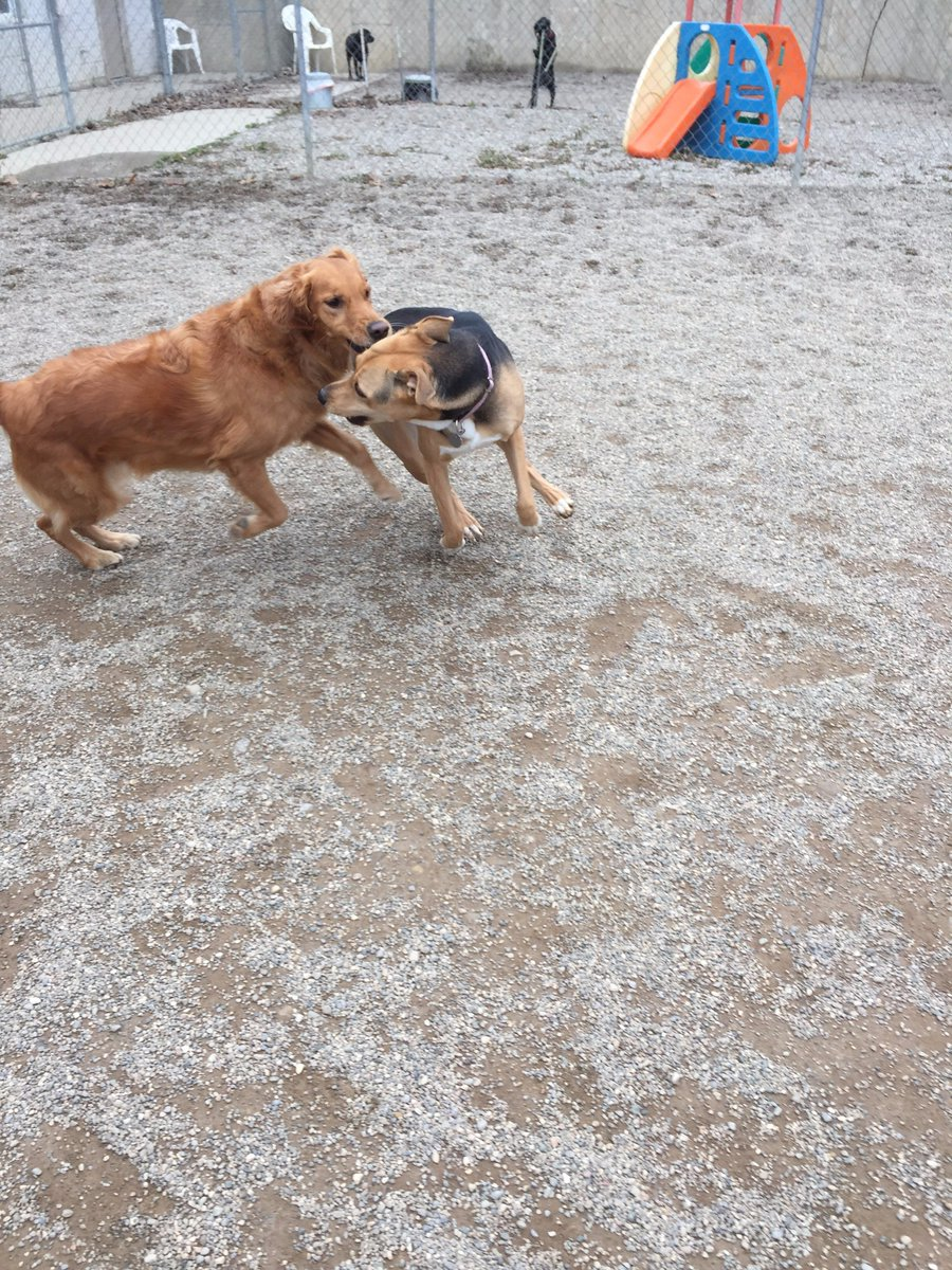 Chloe and Maggie Mae race off