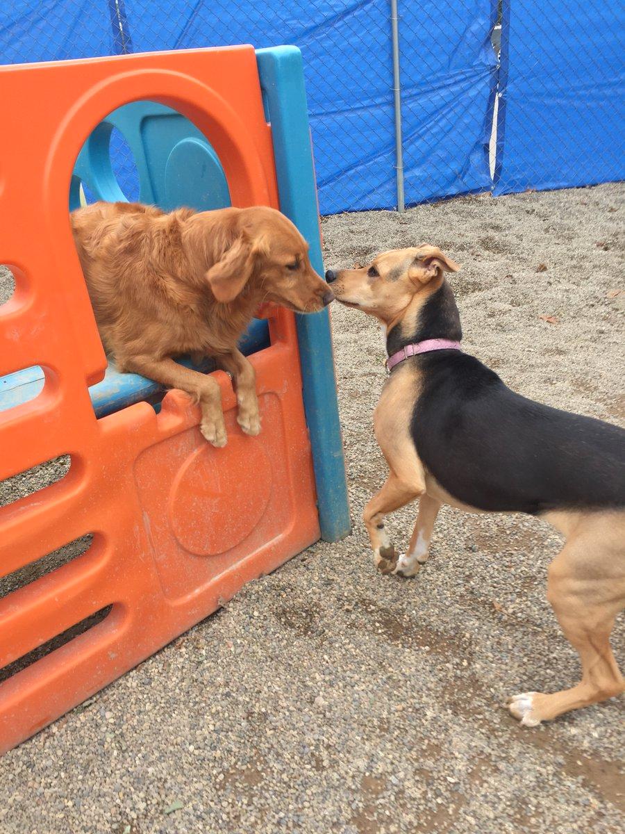 Chloe and Maggie Mae share a secret