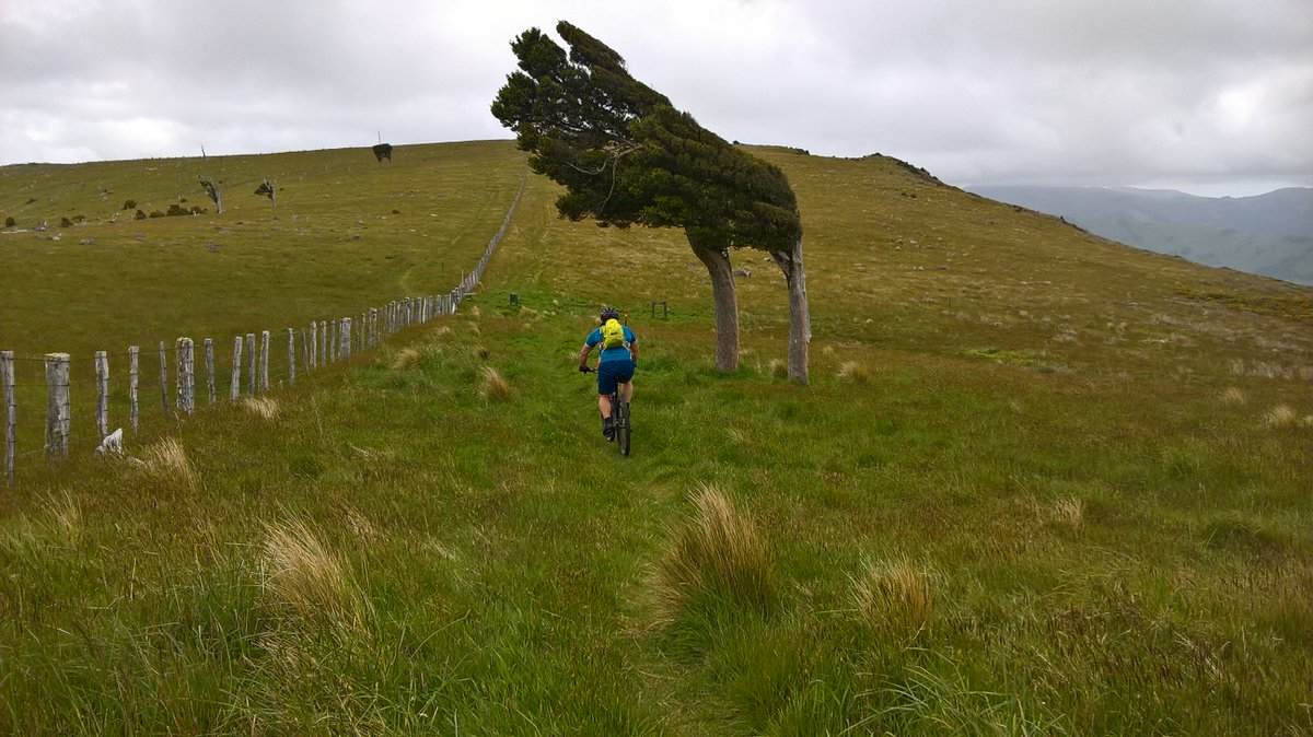 #mountainbiking on Double Fenceline on Banks Peninsula. Just awesome! <br>http://pic.twitter.com/NXvS9Kih29