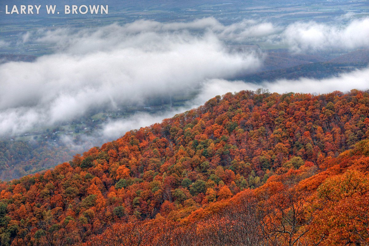 #AUTUMN LEFTOVERTURE #ShenandoahNationalPark Low clouds in the #ShenandoahValley #Fall #FallFoliage #VirginiaOutdoors #FallInVa<br>http://pic.twitter.com/HJyksZLWux