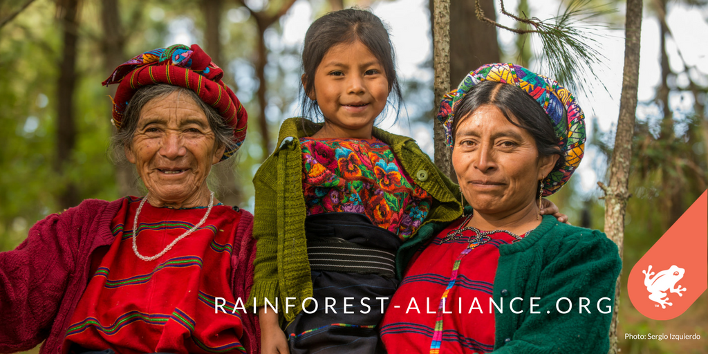 1.6 billion people worldwide depend on #forests for their livelihood. Join us in fighting for them:  http:// bit.ly/2j8xtr3  &nbsp;  <br>http://pic.twitter.com/JfILj3I23l