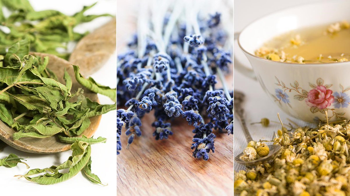 5 everyday herbs that help you stay calm and control anxiety: https://t.co/0vIanE7imG