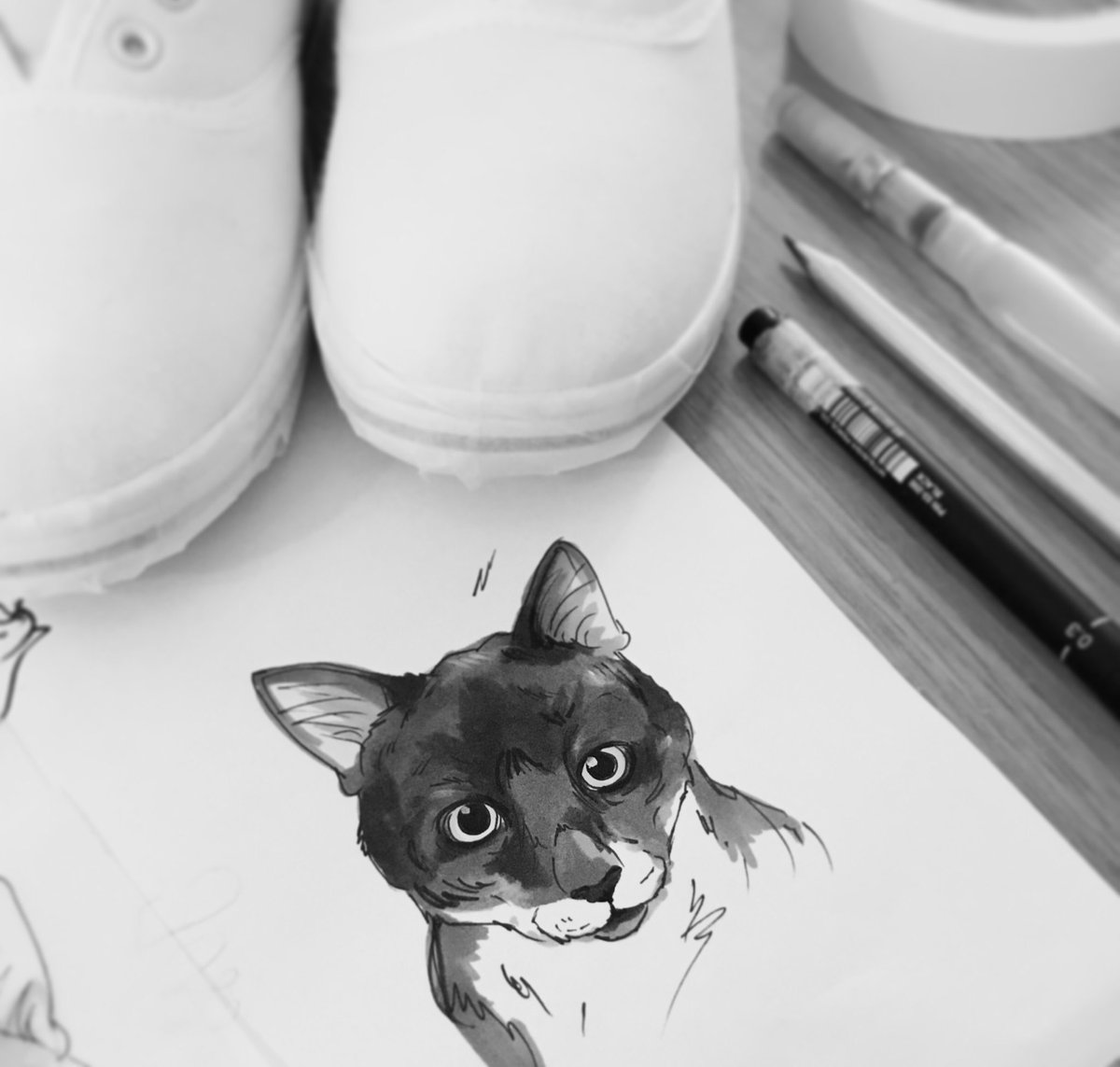 It's Caturday, so we know what that means.... #caturday #petportrait #wip #handmade #cats #shoeart #etsyseller #crafturday #OnlineCraft<br>http://pic.twitter.com/TjOCNgi0oy
