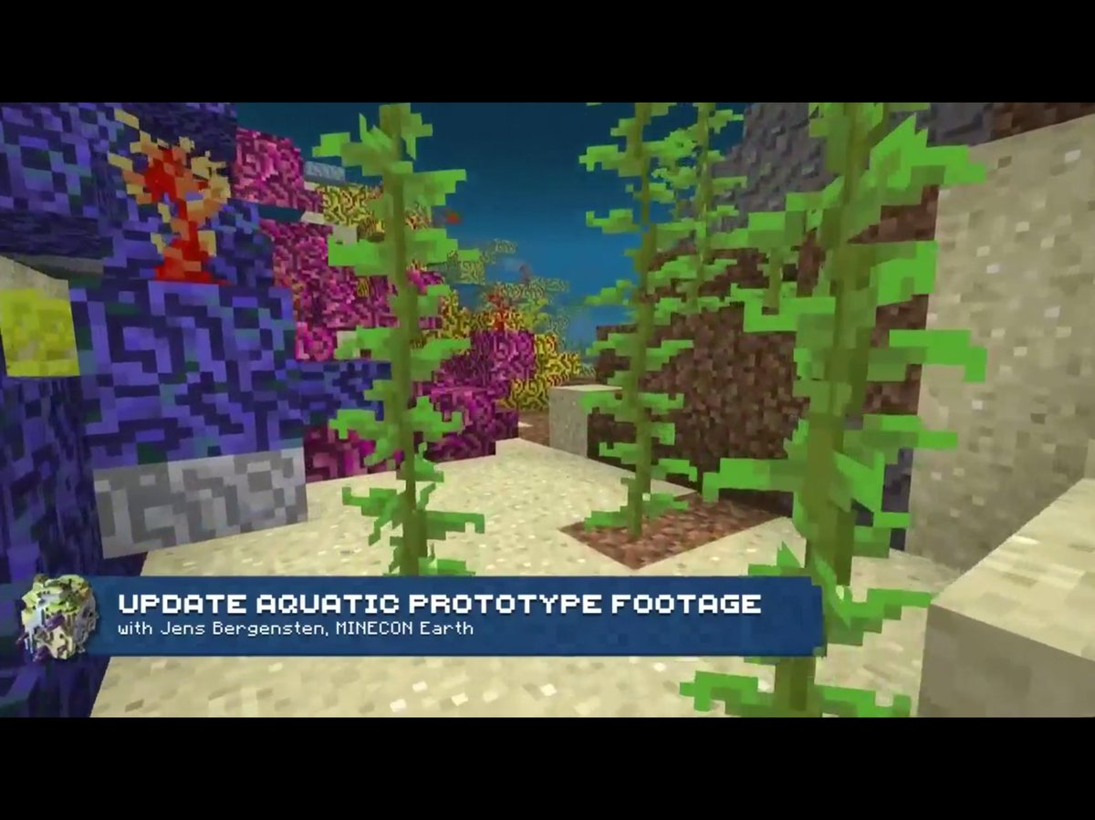 Image result for update aquatic corals