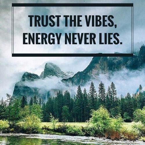 #TRUST THE #VIBES, #ENERGY #NEVER LIES  via @HRHTudor1976  #InspireThemRetweetTuesday #ThinkBIGSundayWithMarsha #JoyTrain #Family #Friends #Life #SuperSoulSunday #Universe #World #SuccessTRAIN #SuperSoulSaturday<br>http://pic.twitter.com/pPIuzzzkXp