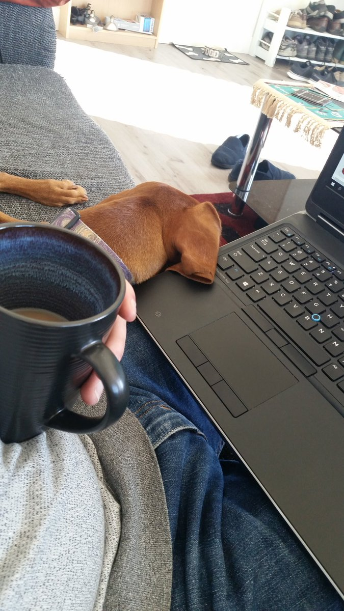 Bert and a cup of tea helping me narrow down molecular structures of interest #phdlife <br>http://pic.twitter.com/G31yQLqV9Y