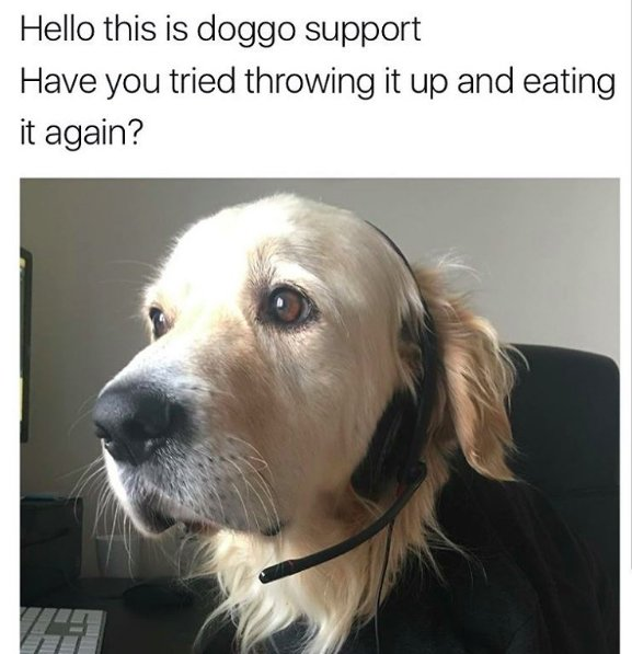 Umm....no...I think I&#39;ll skip that solution! #ITSupport #TechSupport #DogsofTwitter #DogMom #DogDad #Dogs #Dog #DogLover <br>http://pic.twitter.com/0FpN570cLp