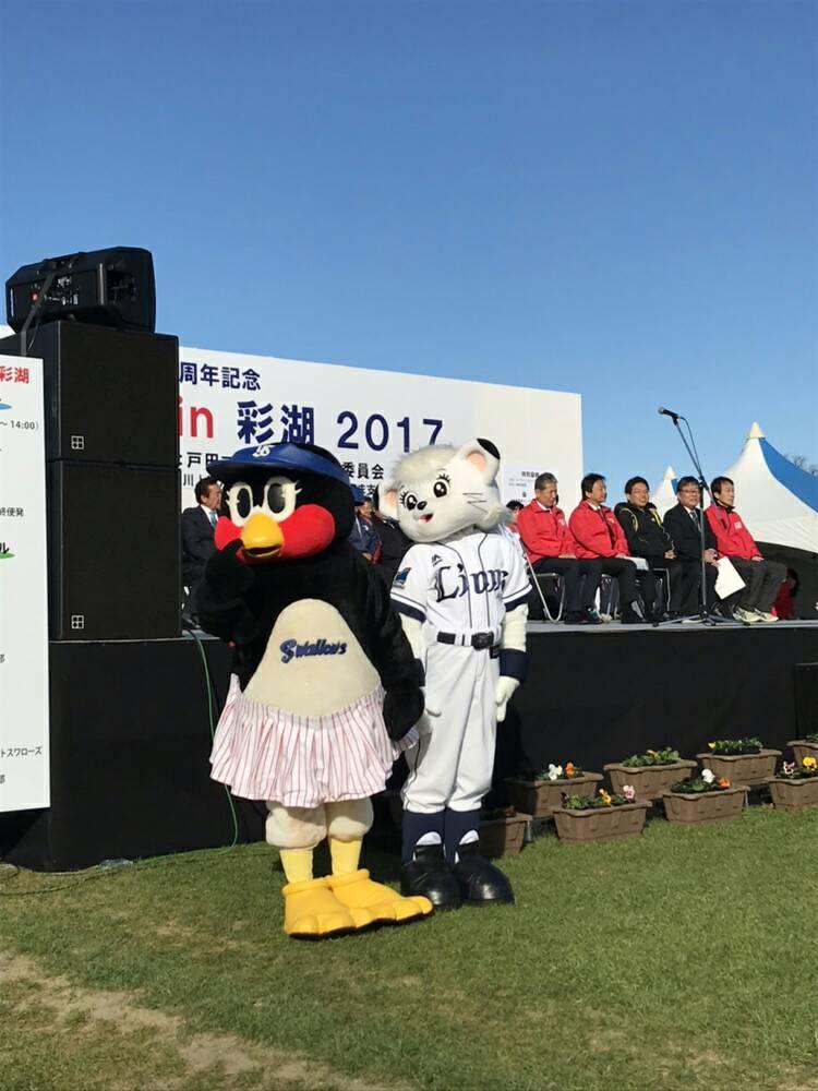 戸田マラソンin彩湖 2017に、つばみとライナが参加し会場を盛り上げています!#swallows  #つばみ