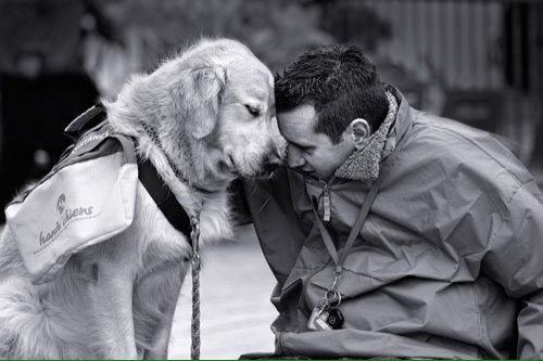 Mans best friend will forever be a dog. #dogsarelove <br>http://pic.twitter.com/VWoCyovbyW