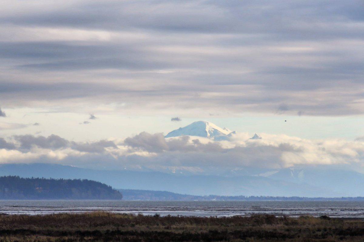MountBaker above boundary bay this cold windy Saturday 18 November 2017 #mountbaker #explorebc #hellobc #ilovebc #mustbevancouver #pnw #imagesofcanada #vancouverbc #exploredelta #canada150  #canoncanada<br>http://pic.twitter.com/rcBnPVx5NI