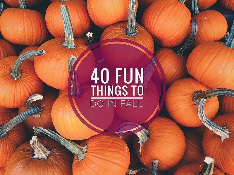 40 fun things to do in the fall :D  http:// bit.ly/2AYjhtA  &nbsp;   @FemaleBloggerRT #bloggerstribe #lifestyle #lbloggers #fall <br>http://pic.twitter.com/e3xW0mncrj