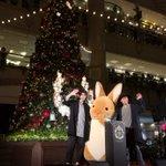 今日は、横浜ランドマークタワーのクリスマスツリー点灯式に出演してきました!ツリーのモチーフになってい…