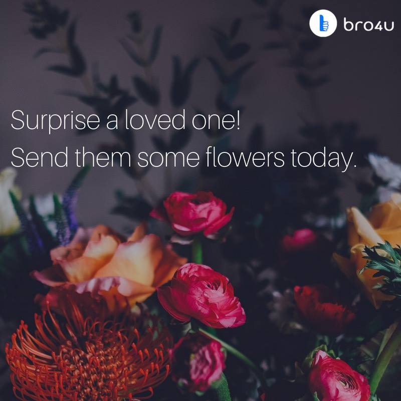 Flowers anywhere anytime in Hyderabad with #Bro4u #online #flower #delivery #services in #Hyderabad. Book now!   https:// bro4u.com/flower-deliver y-hyderabad &nbsp; … <br>http://pic.twitter.com/R8sqqhjwko
