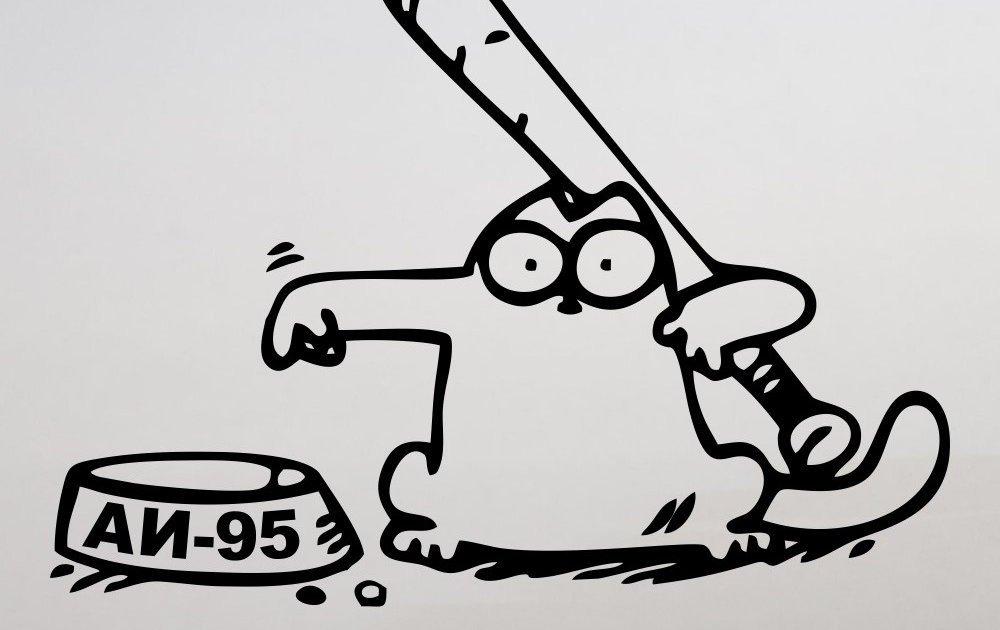 Картинки лисой, рисунок карандашом смешной кот