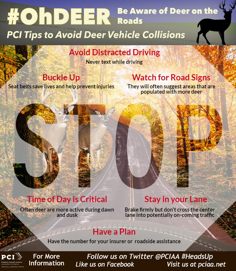 RT @TeamAPCIA &quot;Time of day is critical. Often deer are more active during dawn and dusk hours, pay attention #ohdeer <br>http://pic.twitter.com/qJsSCP0IVs&quot;