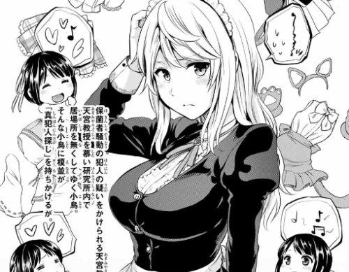 ネタバレ 黒 猫 インフェクション 一般漫画ネタバレ