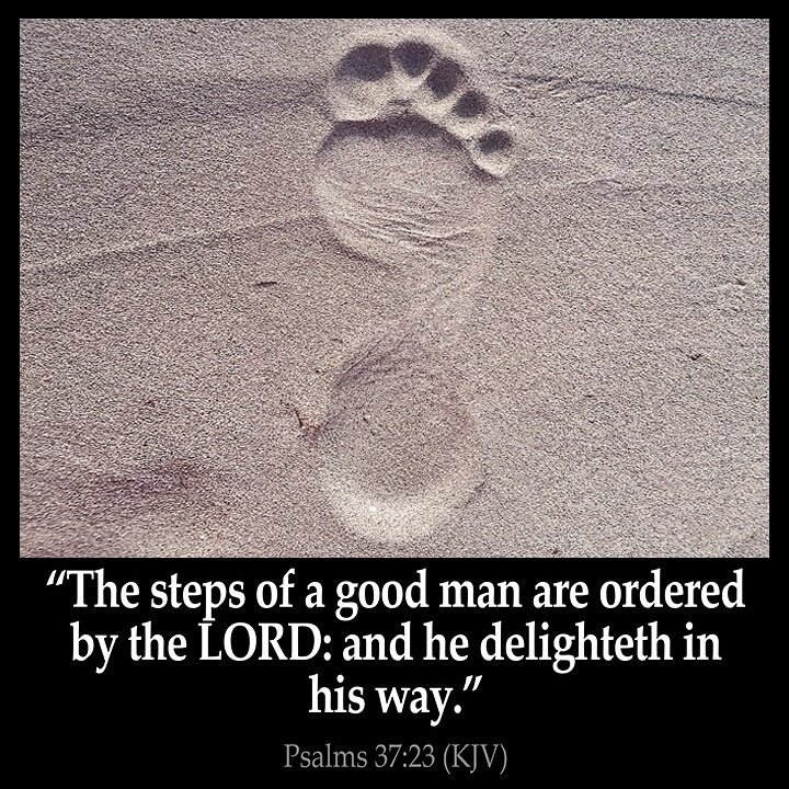 """Image result for """"The steps of a good man are ordered by the LORD: and he delighteth in his way."""" Psalm 37:23, KJV"""