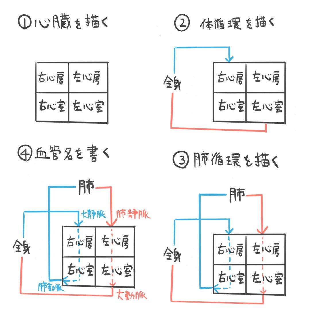 覚え 方 四 徴 症 ファロー