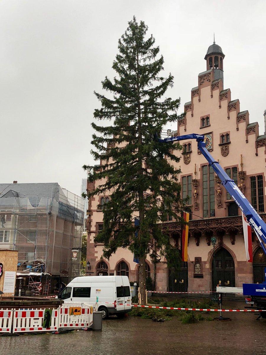 Weihnachtsbaum Frankfurt.Henriette Domhardt On Twitter Da Möchte Einer Geschmückt Werden