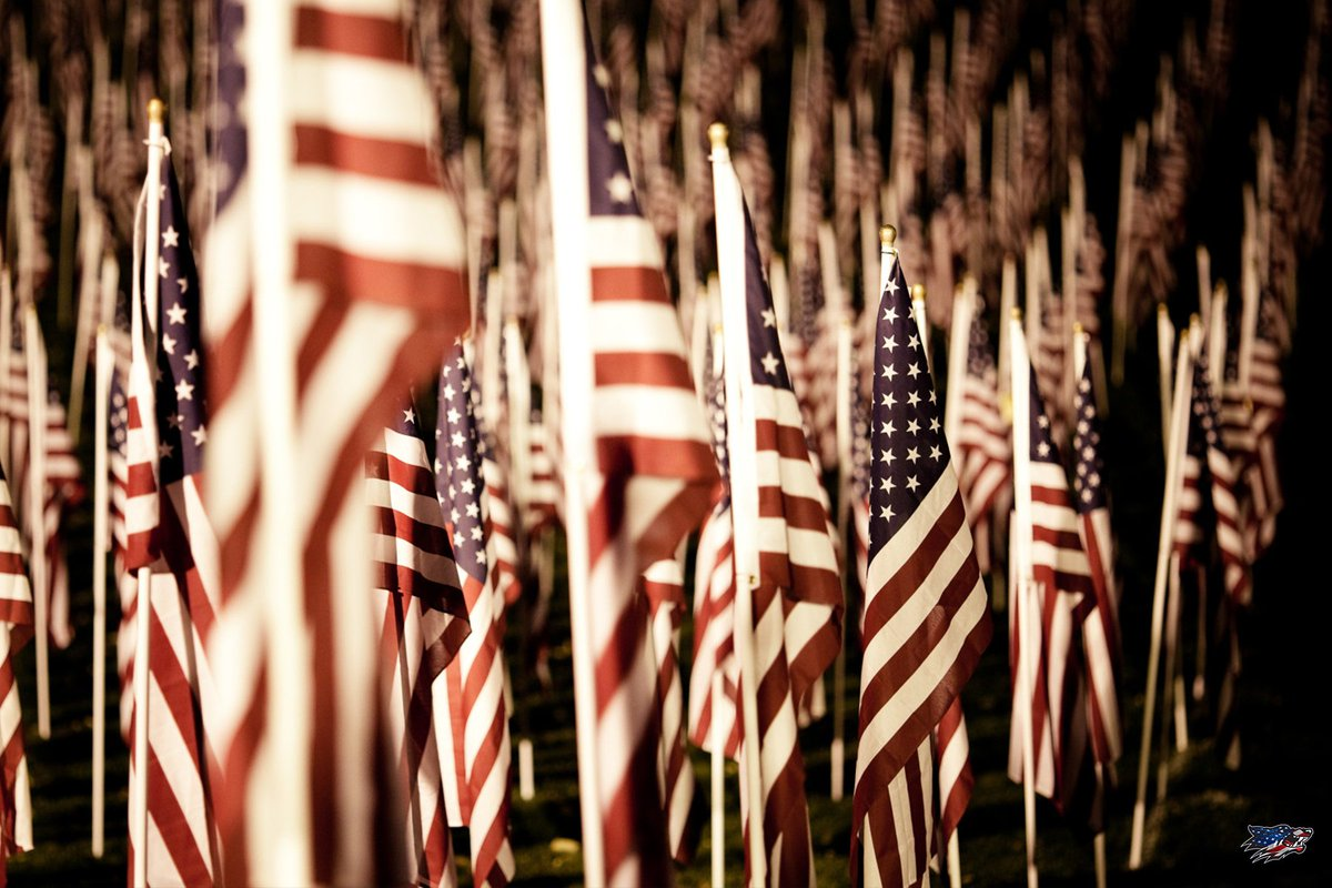 Happy Veterans Day! We are more than thankful for those that have fought for our freedoms!