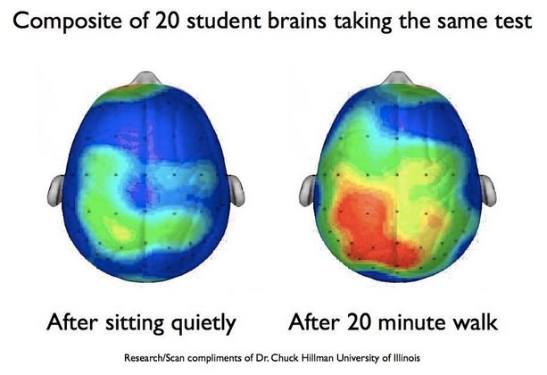#Teachers get your #students moving everyday, here&#39;s neurological evidence for the benefits!  http:// ow.ly/OlDq30gr9d7  &nbsp;   Love this @jradojkovich<br>http://pic.twitter.com/ff7TFvukHO