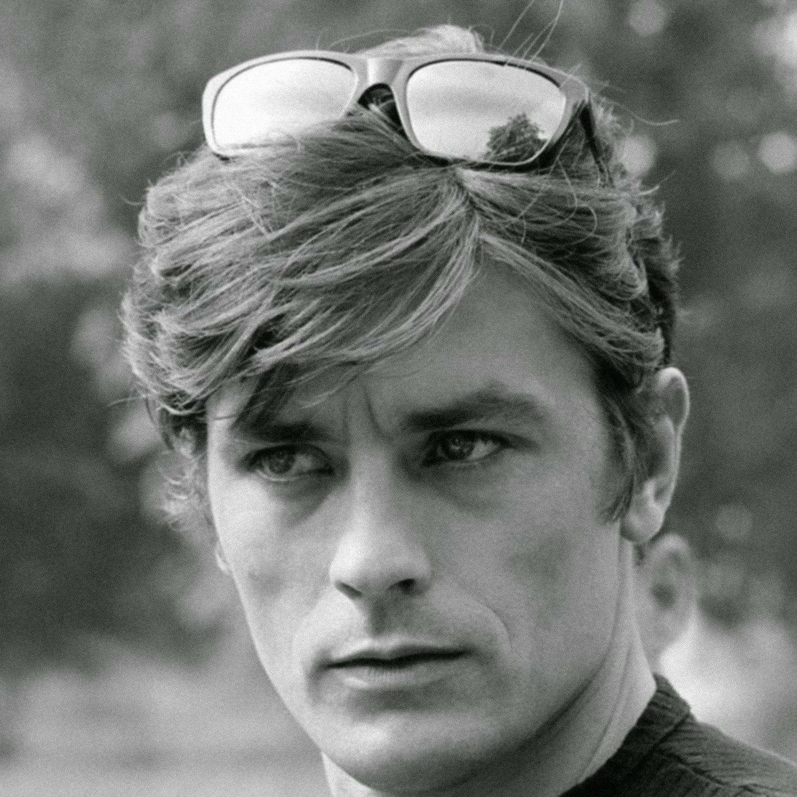 Happy birthday to Alain Delon, one of the most unreasonably handsome actors to ever grace the screen