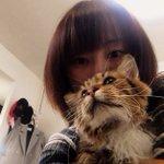 最近のうちの愛猫の可愛さが留まるところを知らない。おはようございます。本日『24番地の桜の園』初日で…