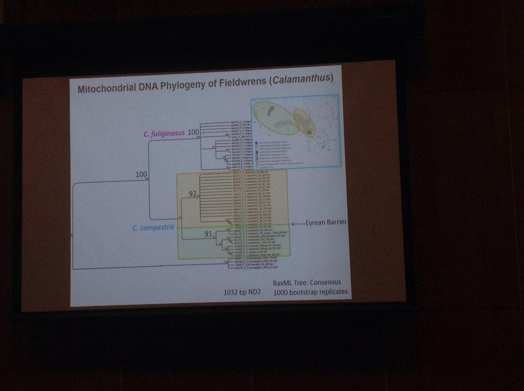 World in Transition: Future Bioenergy