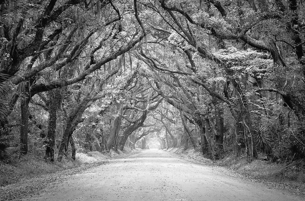 I talk to the Trees   #ChetBaker &amp; #BillEvans    https://www. youtube.com/watch?v=9yIxzB eRDk8&amp;sns=em &nbsp; … <br>http://pic.twitter.com/ihNNiVCFTq