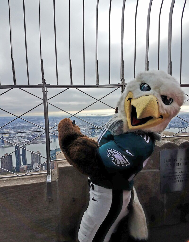 Philadelphia Eagles On Twitter Swoop Had A Great Time Atop