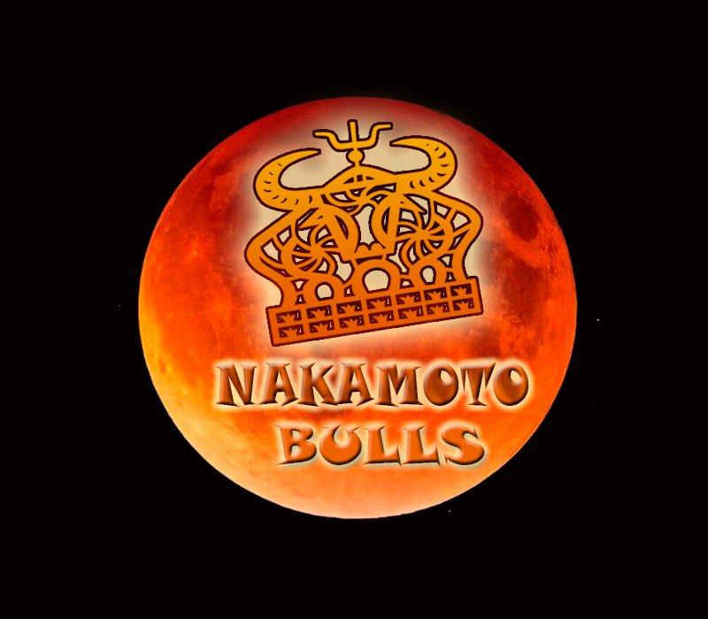 Nakamoto Bulls on Twitter: