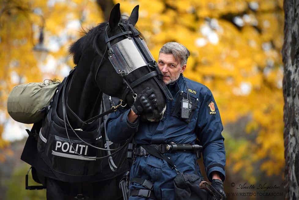ノルウェー騎馬警察もやばみ…