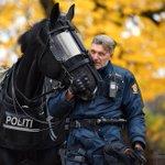 カッコ良過ぎる!ノルウェー騎馬警察もやばみ…めっちゃ強そう…