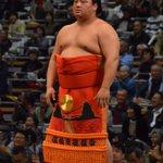 <大相撲九州場所前夜祭>郷土出身力士紹介。大分県佐伯市出身、嘉風。#sumo pic.t…