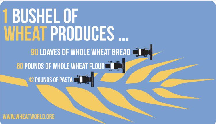 Who else loves #bread &amp; #pasta?! Thanks to #wheat farmers for working hard to produce the #food we all love! Check out @wheatworld to learn more!  #CAO17 #Food #SustainableAg<br>http://pic.twitter.com/2K9jKCv9Ul