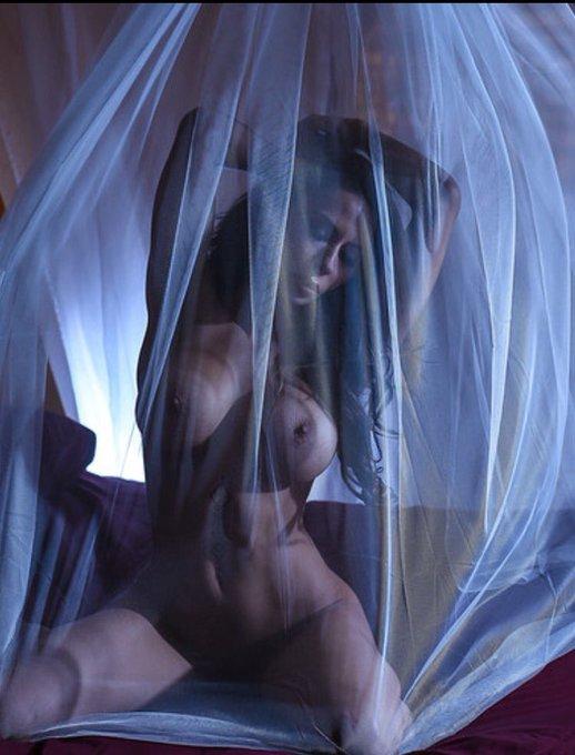 I hide my true feelings just beyond the veil.... https://t.co/ehWO3VsrrL