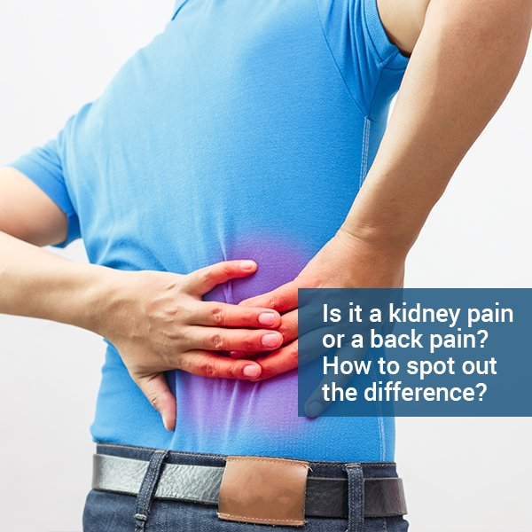 Apollohospitals Sur Twitter Many Of Us Fail To Figure Out The Difference When We Experience Pain Particularly When It S Either Kidney Or Lower Back Pain Let S Explore The Exact Differences Between