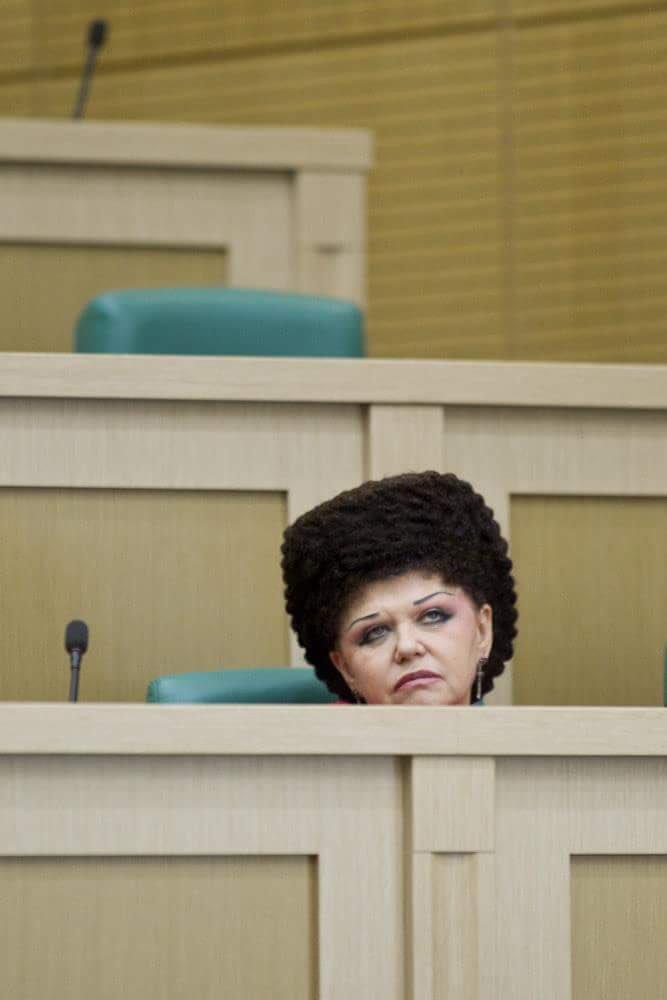 Совет Федерации в одной фотографии