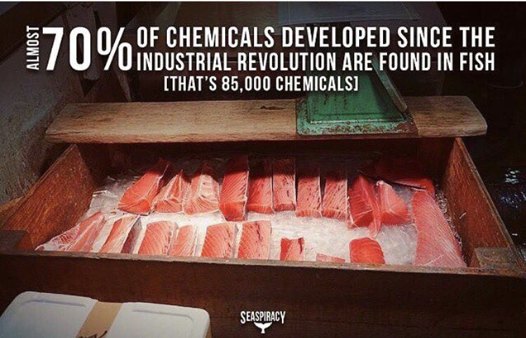 &quot;Fish constitute the most polluted food we eat, with 85,000 chemicals found in fish bodies.&quot;-Seaspiracy #wth #whatthehealthfilm #seaspiracy<br>http://pic.twitter.com/ls7rUgy5g5