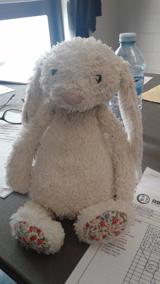 Did anyone lose their bunny at the #BNWRIceBreaker #Ringette Tournament? It's in the Lakeview Room at Bill Copeland.pic.twitter.com/Q6XZZ4AD66