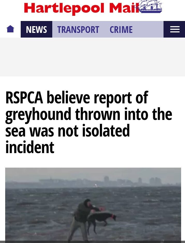 This is  #Awful #Bad #Cruel #Dreadful #Evil #Frightening  #Ghastly #Heinous #Infamous  #Lawless  #Mean #Nasty  #Odd  #Poisoned  #Questionable  #Rotten #Sad  #Terrible  #Useless #Vile #Zealous  #Greyhoundracing #Time2ban it<br>http://pic.twitter.com/B5Fuxgxjr1