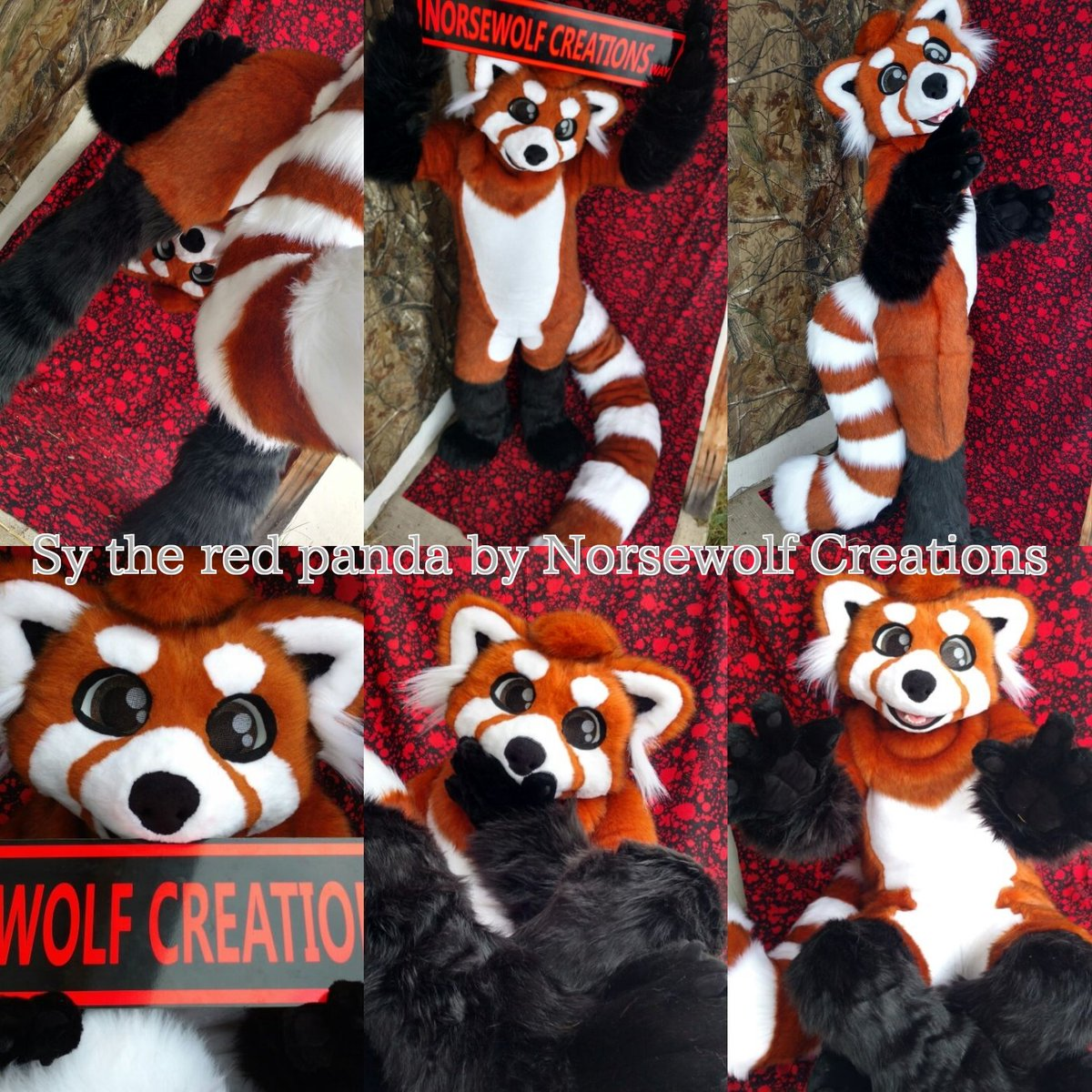 """Fursuit Panda norsewolf creations on twitter: """"please welcome @sypanderp"""