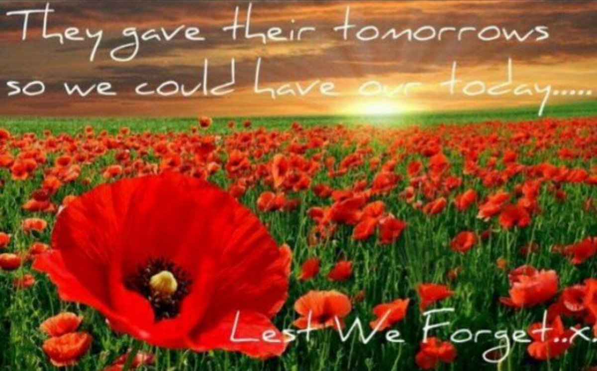 Image result for poppy lest we forget anzac day