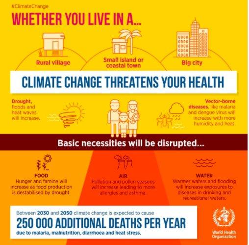 efeitos das ondas de calor na saúde