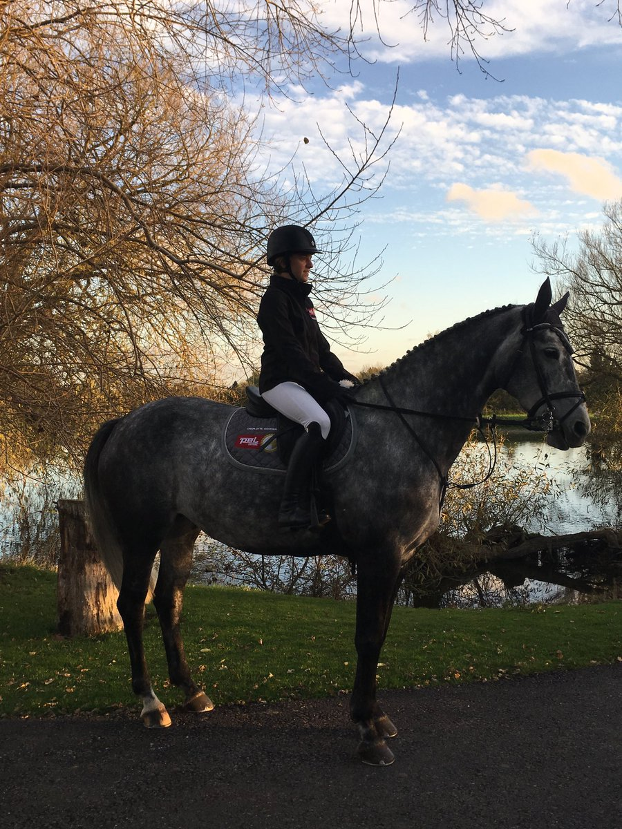 Our sponsored rider, Charlotte Goodwin, with Meg, looking rather smart in front of a beautiful autumn skyline. #PEL #EquineFencing #Tru-Test<br>http://pic.twitter.com/n8zPBr46GL