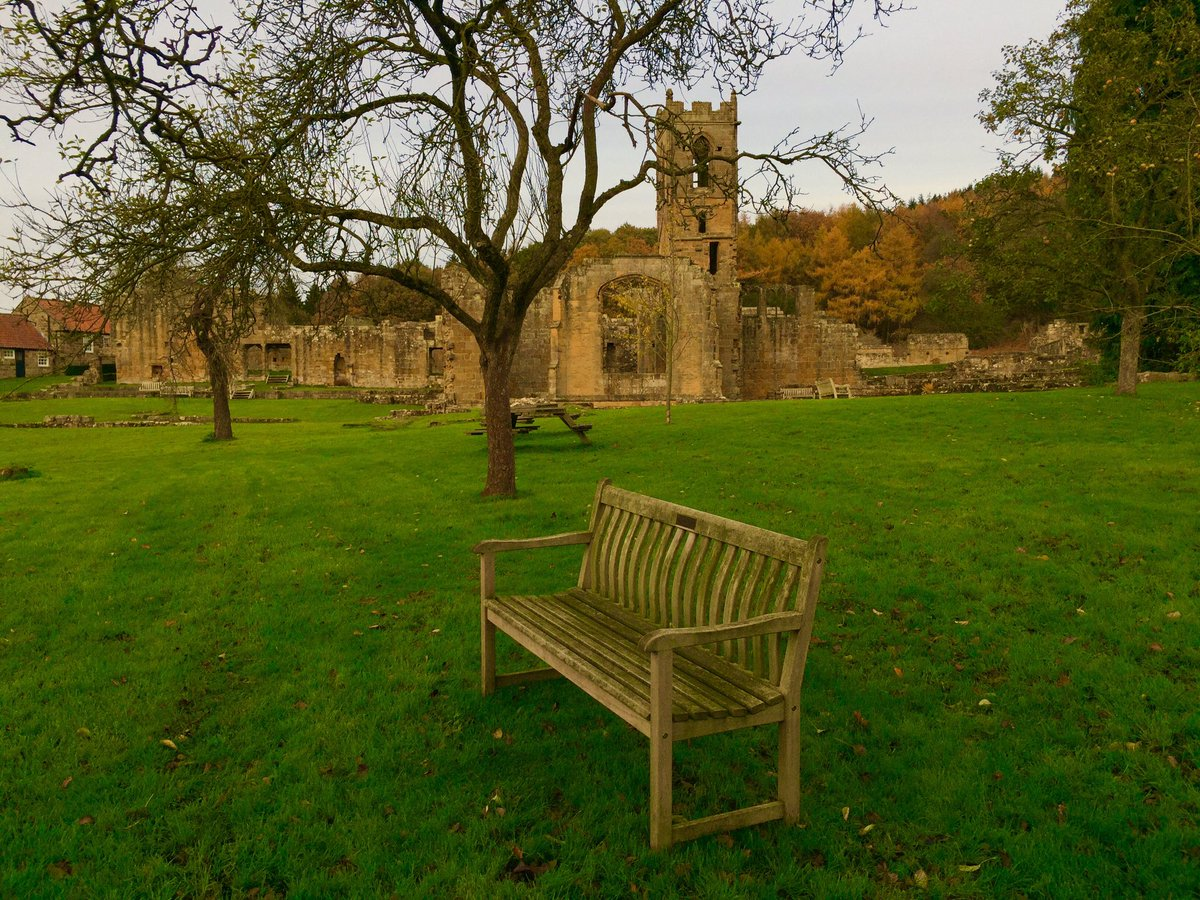 Late afternoon at Mount Grace Priory. Lovely light and lots of #Benches  Well worth a visit. @EnglishHeritage #Thirsk #NorthYorkshire <br>http://pic.twitter.com/rEGat1kuDh
