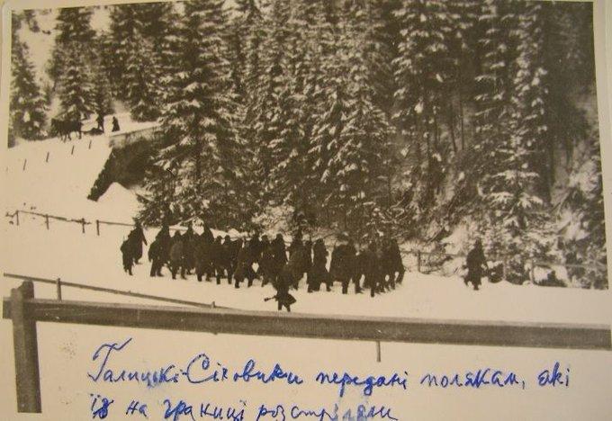 Порошенко и Дуда договорились о заседании Консультационного комитета президентов Украины и Польши на следующей неделе в Кракове - Цензор.НЕТ 1580